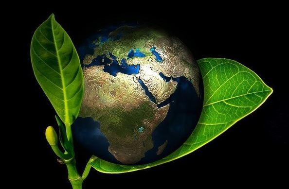 kaufen Produktion von Geroh - Naturfutter
