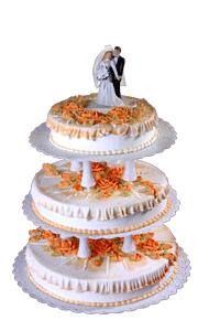 Hochzeitstorte 3 Stockig In Stendal Verkaufen