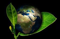 Produktion von Geroh - Naturfutter