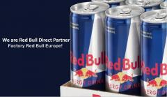 Red Bull can 250 ml x 24