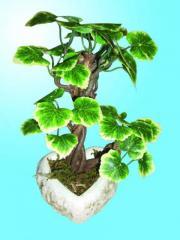 Textilplanzen - Bonsaibaum