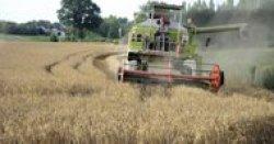 Europas Landwirte sollen mehr für den Umweltschutz tun