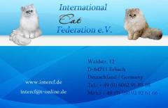 Beratung zu Zucht, Umgang mit Katzen