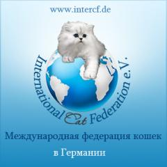 Dienstleistungen bei Tierpflege