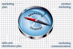 Marketing-Management Consulting